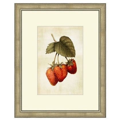 LOVELY FRUIT IV - GDH | The decorators department Store