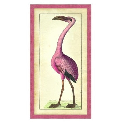 Flamingo - GDH | The decorators department Store