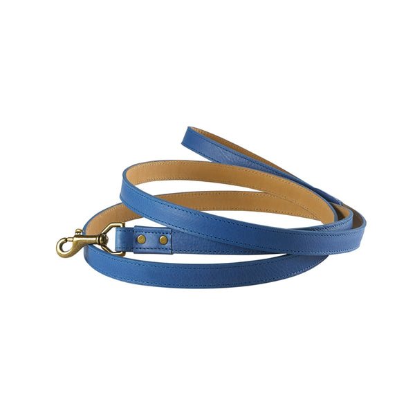6 ft Dog Leash | Blue - GDH | The decorators department Store