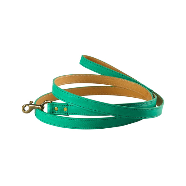 6 ft Dog Leash | Green - GDH | The decorators department Store