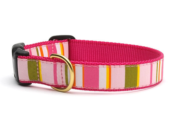 Donna Stripe Dog Collar