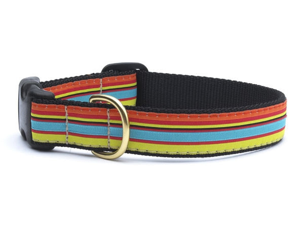 Bright Stripe Dog Collar - GDH | The decorators department Store