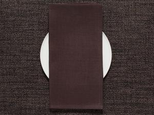 Chilewich Single-Sided Linen Napkins-Set of 8   Mocha
