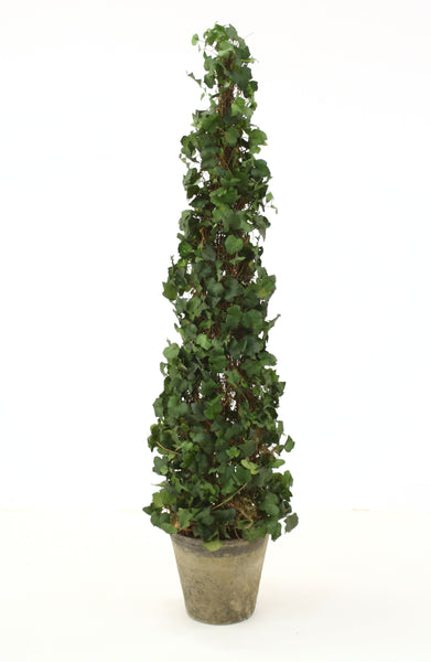 "53"" Ivy Topiary in Mossed Concrete Pot"