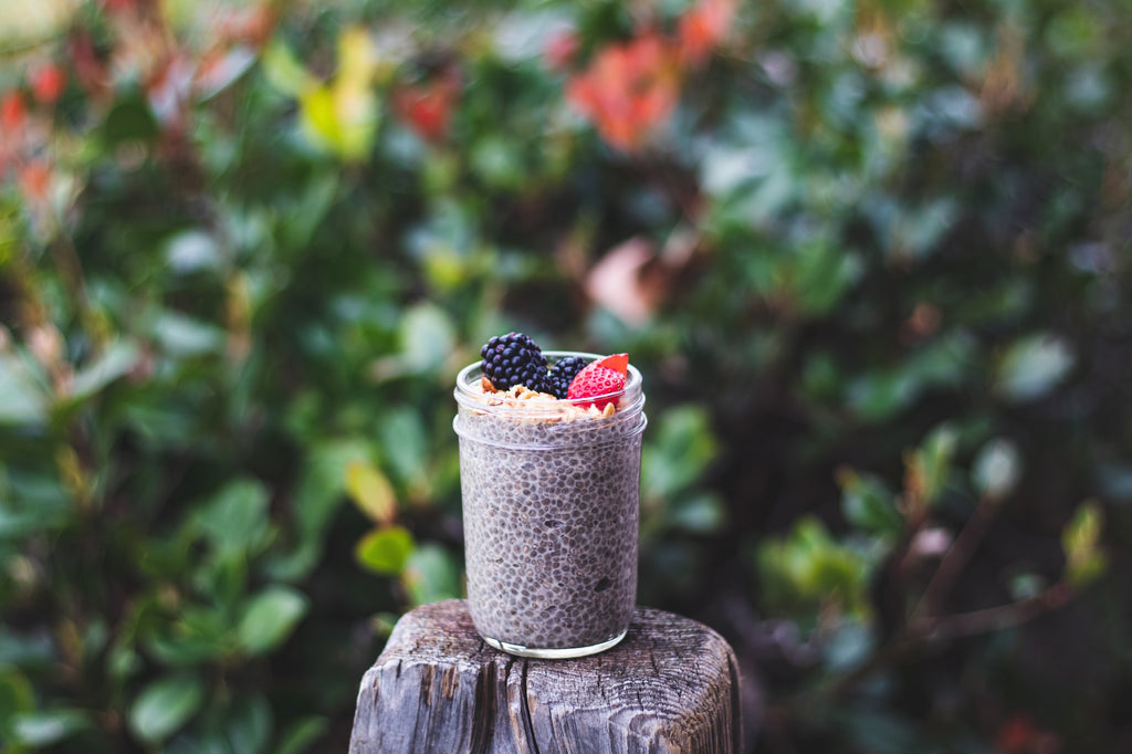 Chia Pudding with Organic Bone Broth