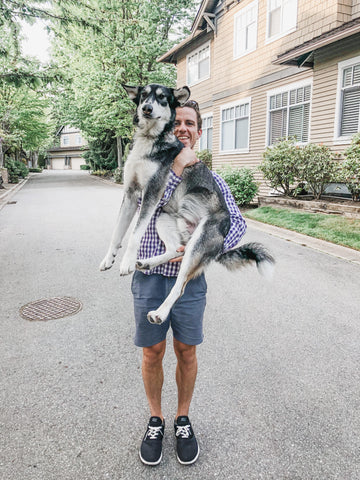 dog with his owner