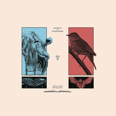 Ostraca/Flesh Born - faces of the moving year split EP