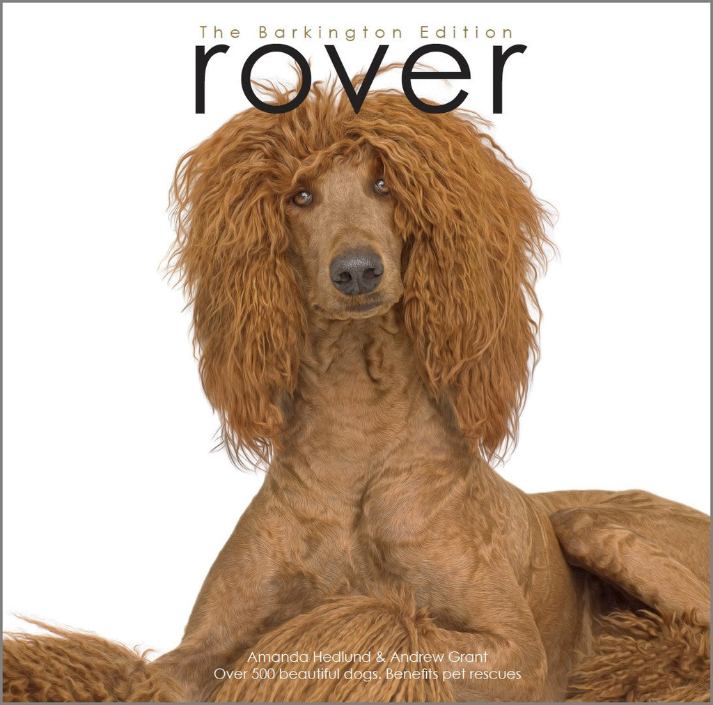 Rover: The Barking Edition