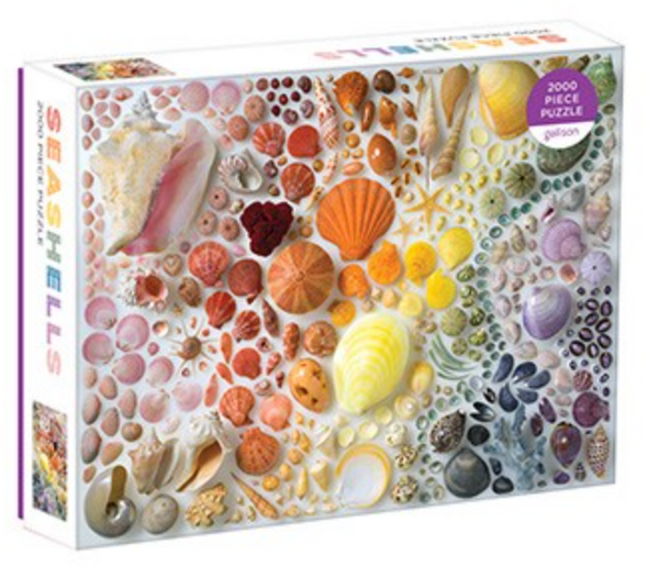 Rainbow Seashells Puzzle