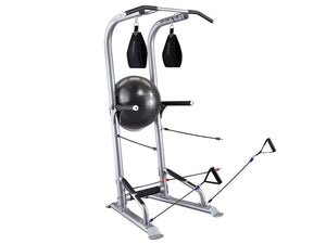 BodyCraft T3 Total Training Power Tower