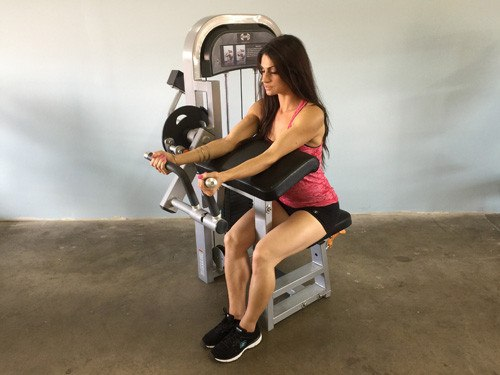 MuscleD Seated Bicep Curl