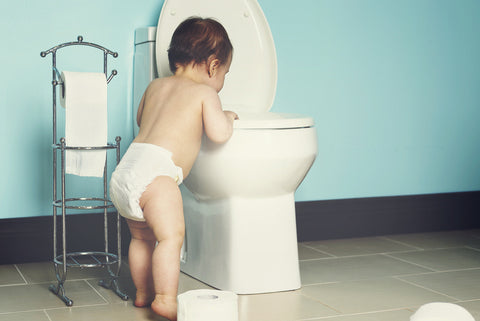 Toddler looking in toilet
