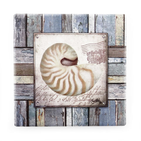 Beach Shell Coaster