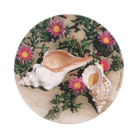 Shells and Flowers Coaster