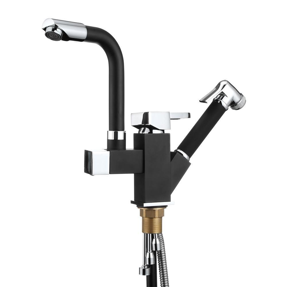 Multifunctional Faucet With Pull-down Sprayer