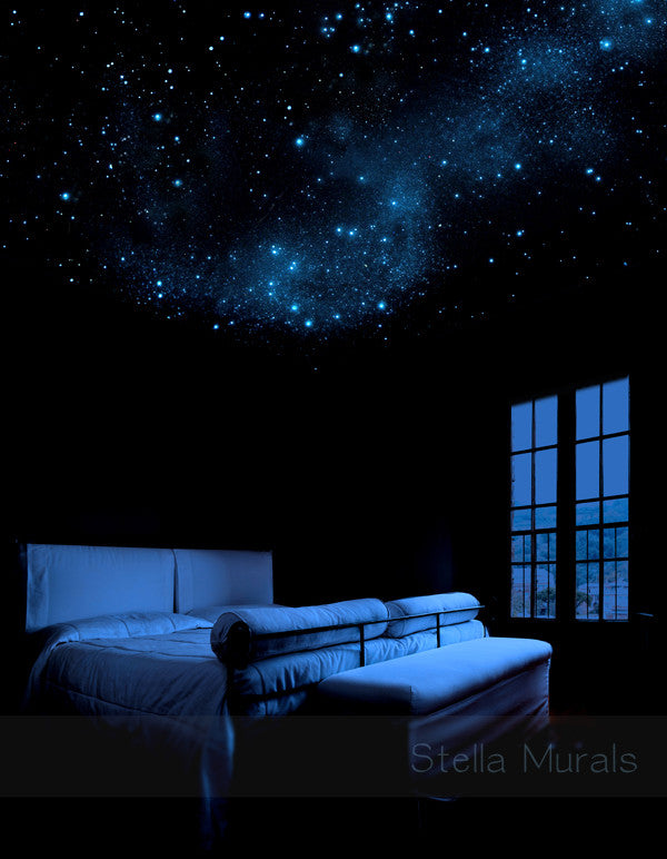 Removable Reusable Star Murals