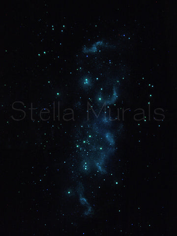 orion glow in the dark constellation poster