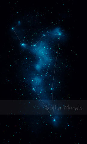 glow in the dark leo constellation