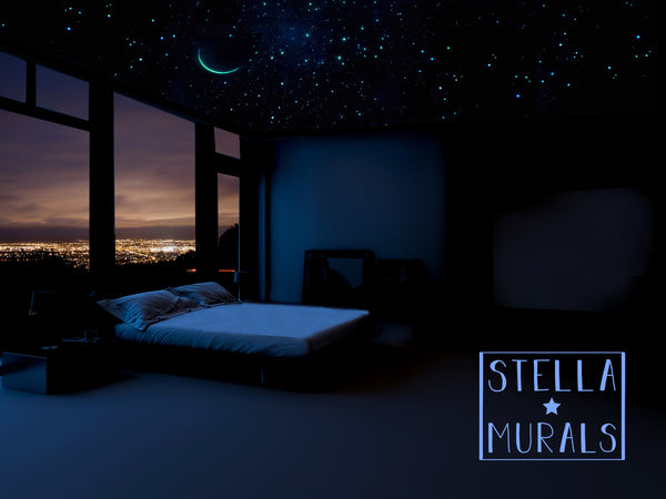 Glow in the Dark Star Ceiling | Crescent Moon, Shooting Stars | White