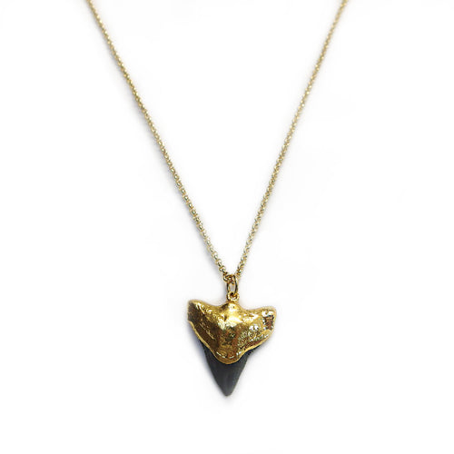 Gold Shark Tooth Pendant