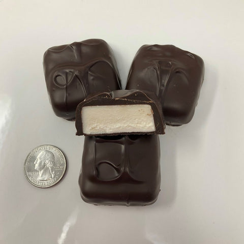 Gourmet Jumbo Vanilla Marshmallow Dark Chocolate Candy 1 pound