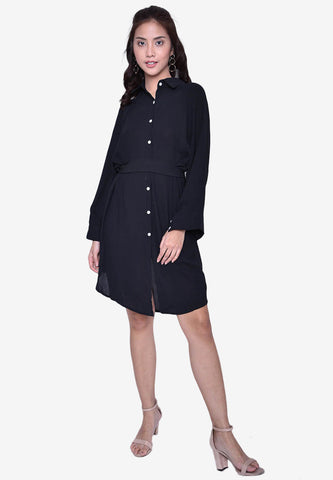 Button-Down Shirt Dress with Belt