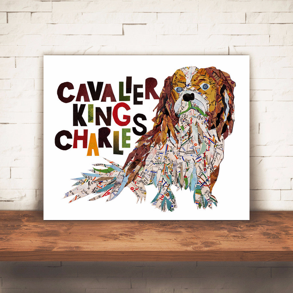 Map dog love Cavalier king Charles Spaniel