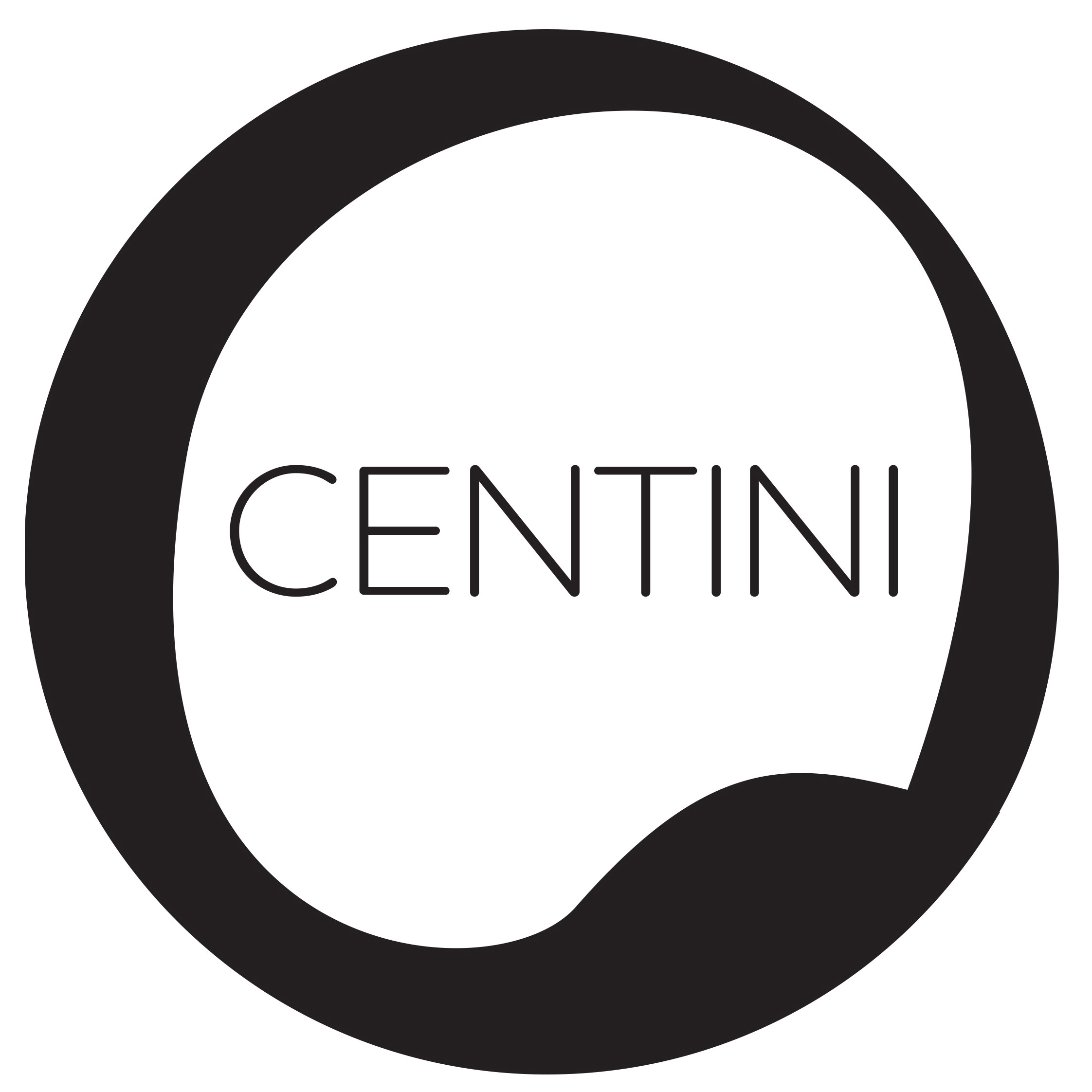 house of centini spring clean