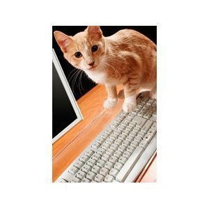 PET GUARD Transparent Viziflex Acrylic Keyboard Cover