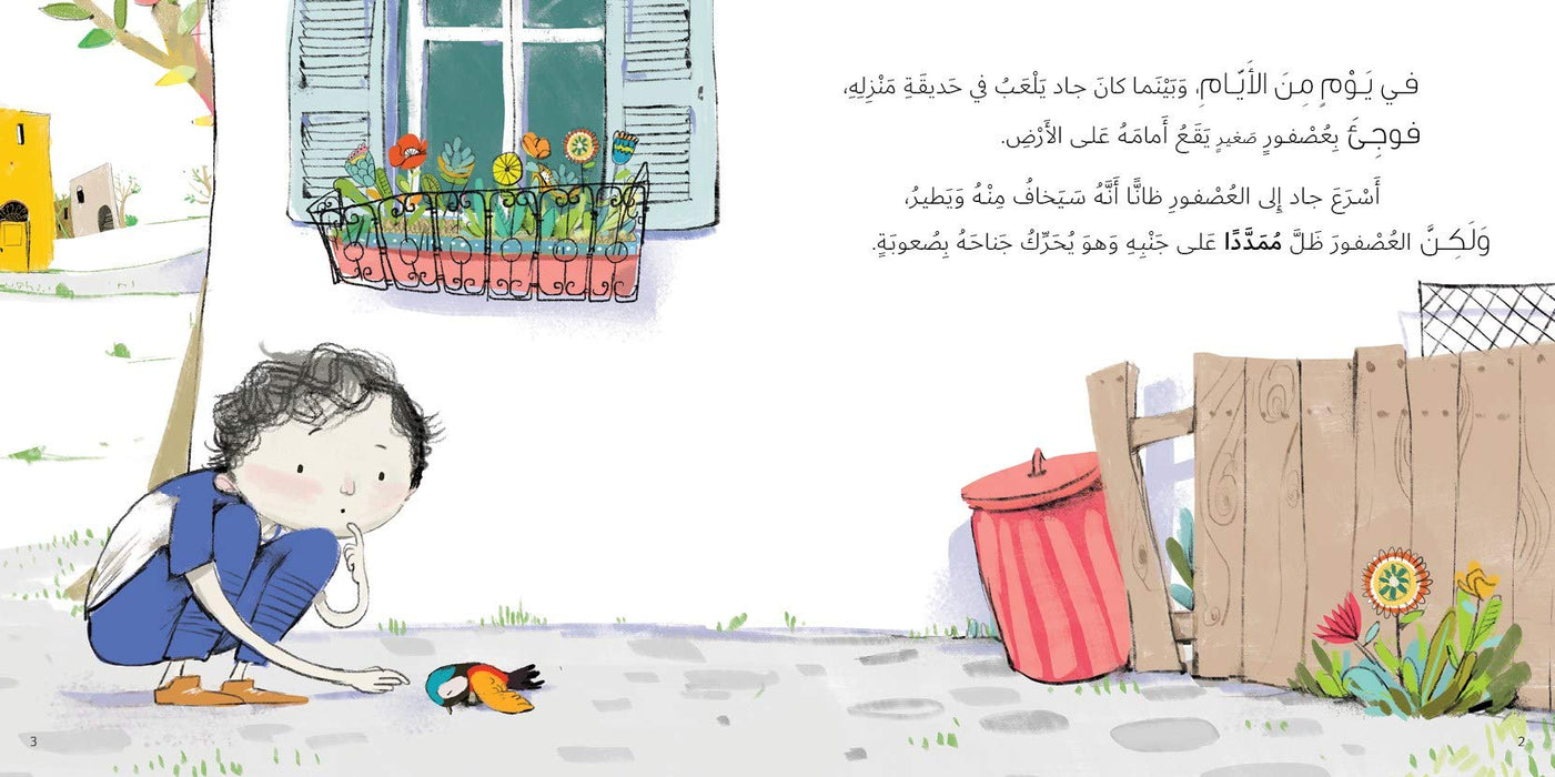 The Bird Flew Written by: Taghreed Najjar, Illustrated by: Aly Zainy Paperback – 2019