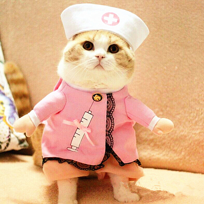 Costume Clothes For Cat Nurse Suit Outfit
