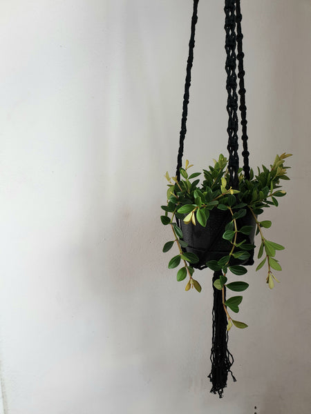 Black Cotton Macrame Lace