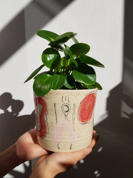 Handmade  Illustrated Planter - Three