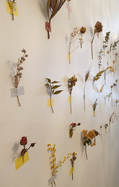 Dried Bloom Wall Art  - home kit