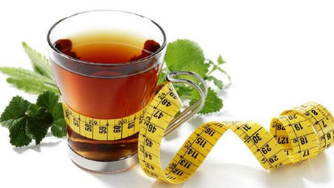 Is green tea better than oolong for weight loss?