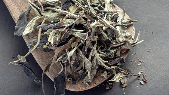 Buy all natural, healthy & ethical white tea online at teakruthi