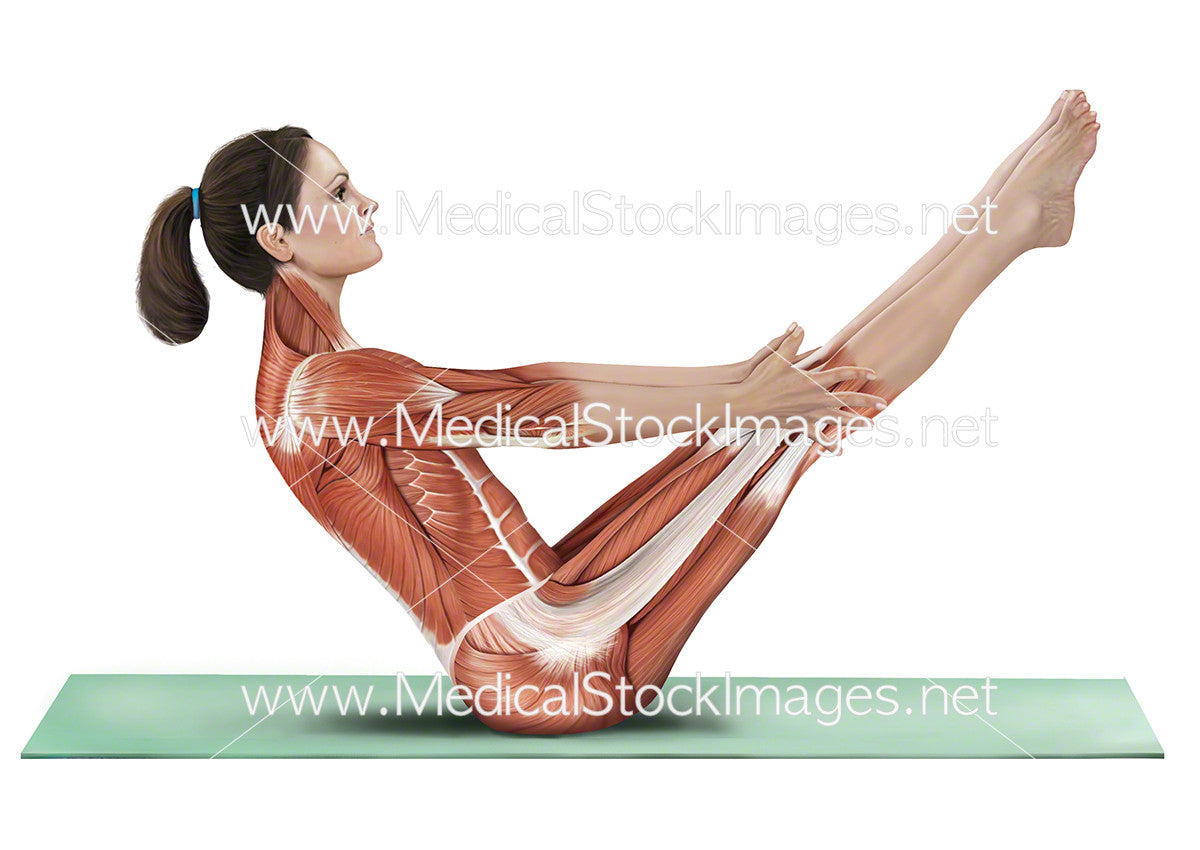 Yoga Boat Pose Paripurna Navasana Medical Stock Images Company
