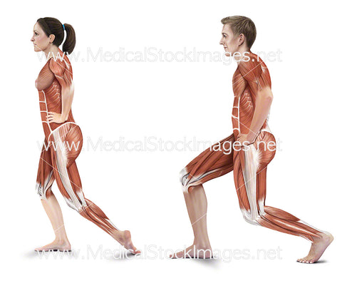 Standing Shin and Standing Achilles Stretches
