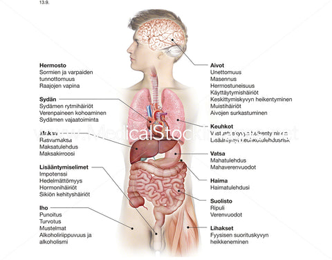 Damage Caused by Alcohol in the Body