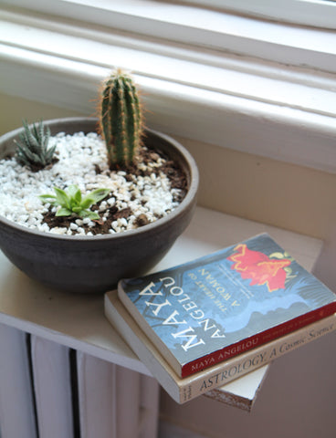 cacuts and maya angelou book by the window - at home with Roslyn Gombe
