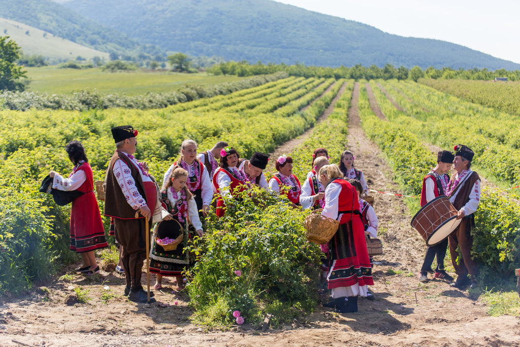 Discover the Rose Valley -  Bulgaria