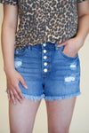 kendra denim shorts - medium wash distress