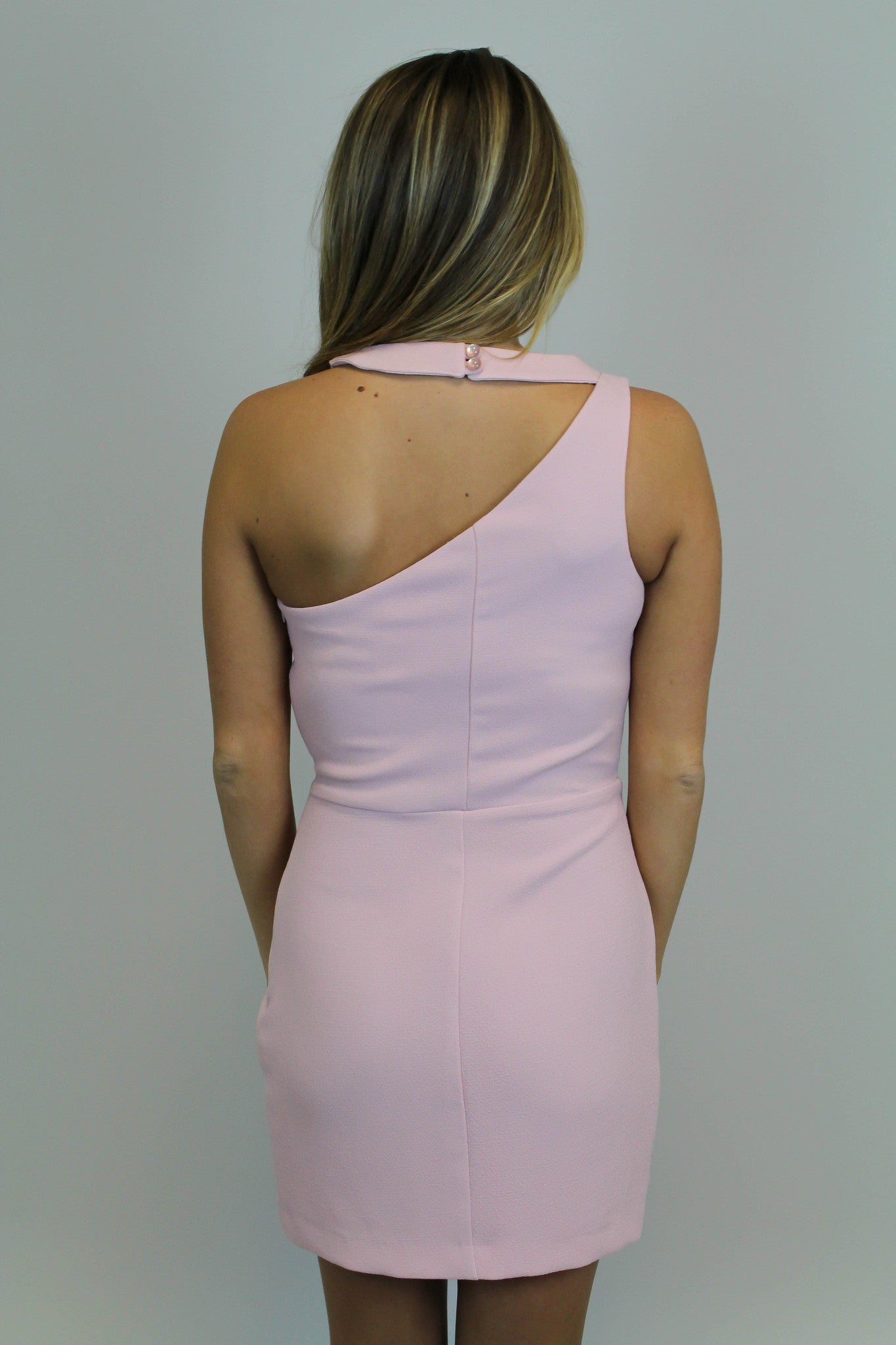 Blush Bodycon Detail Dress