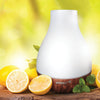 GreenAir Nature Mist Aromatherapy Diffuser