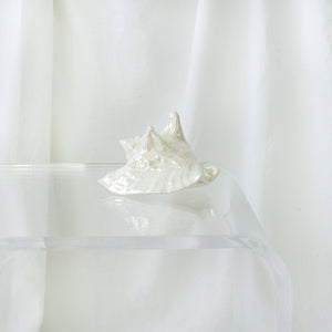Opalescent Shell Decor