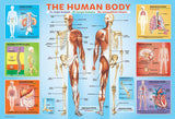 The Human Body - 200 Piece Jigsaw Puzzle