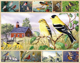 Jigsaw Puzzle Image - 1000 pc Birds on Farm