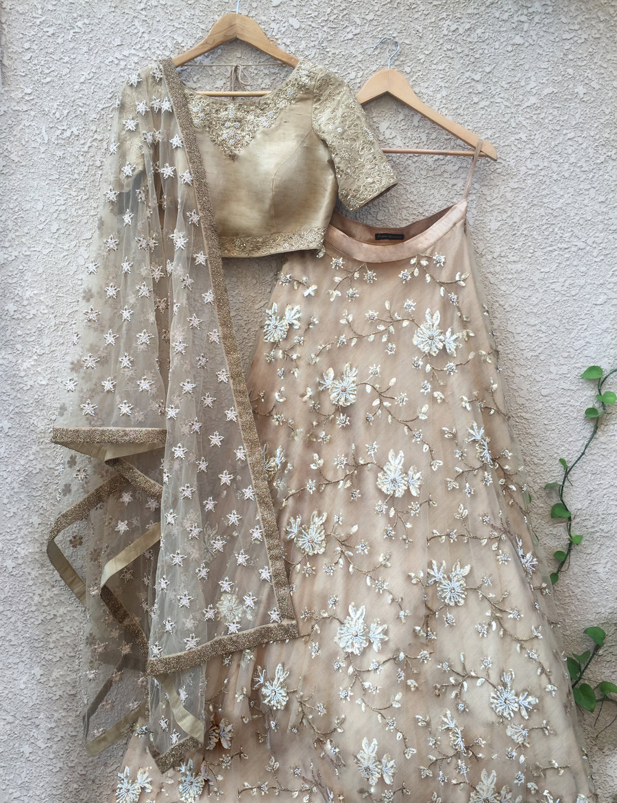 Gold & White Lehenga Set (Raw Silk) - WaliaJones