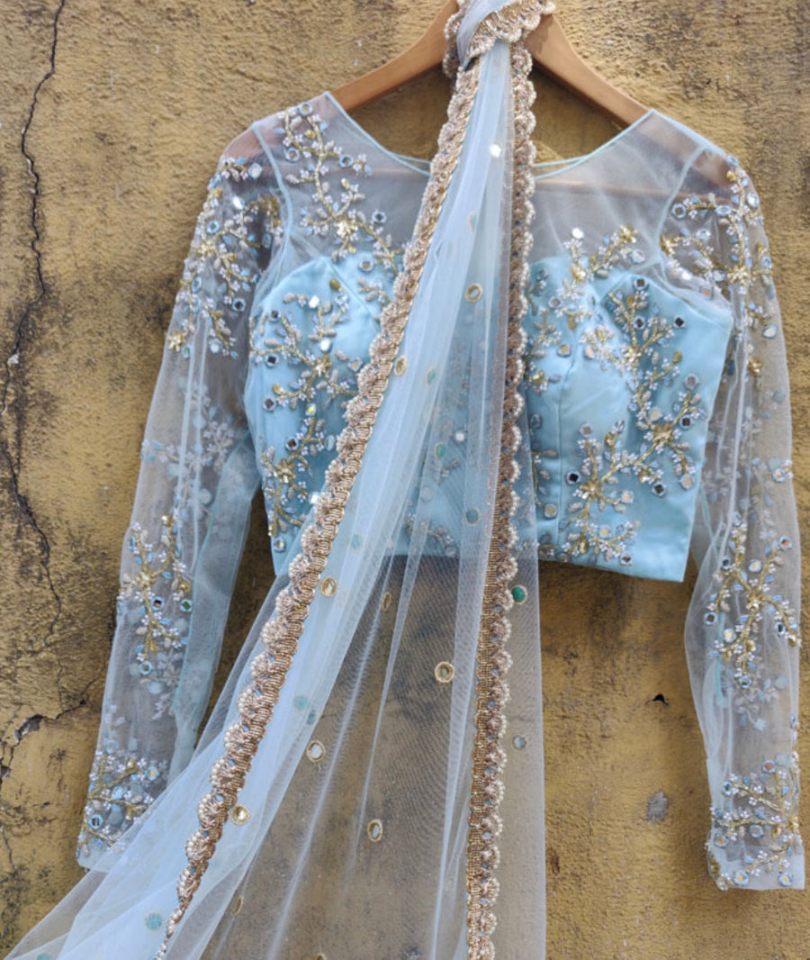 Powder Blue Net Saree - WaliaJones