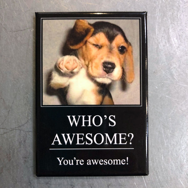 Who's Awesome Magnet